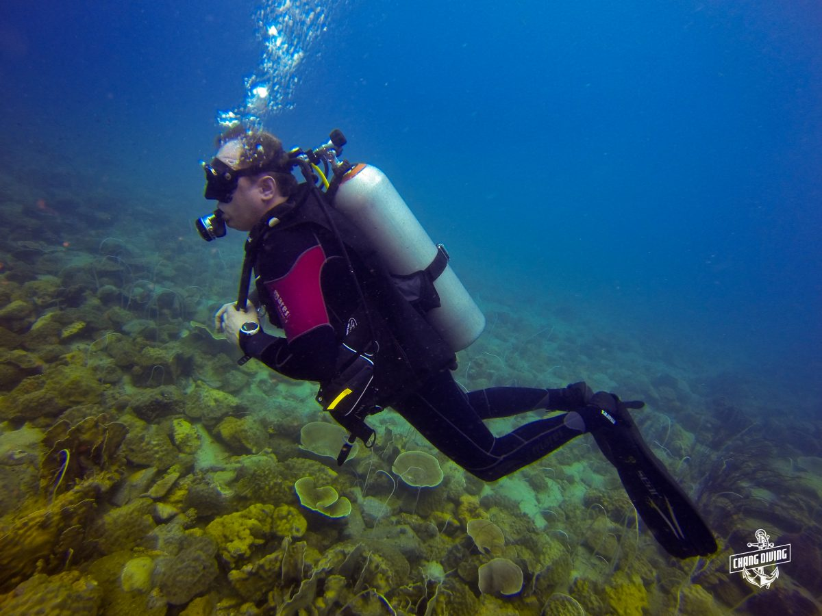 Scuba review Koh Chang get in trim